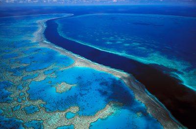 Great Barrier Reef undergoes worst mass bleaching event - Indileak